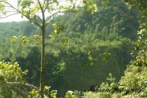 kaliurang view1